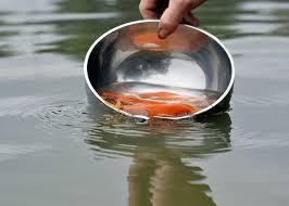 Cách thả Cá Chép đúng cách để Cá vẫn sống tốt sau khi thả
