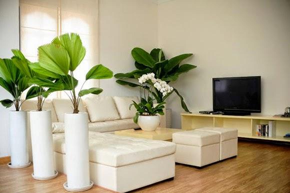 Hướng dẫn trang trí nội thất nhà cho năm 2018