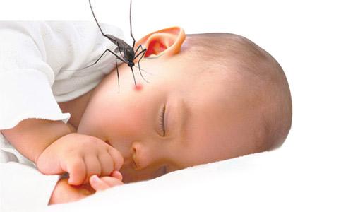 15 cách trị vết muỗi đốt cho bé không bị ngứa và khó chịu